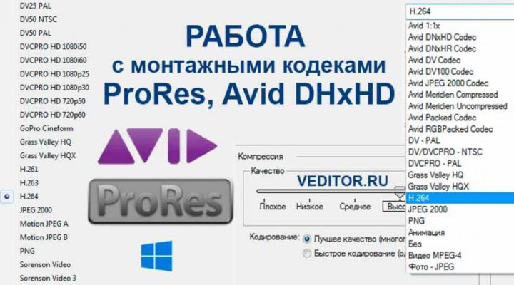 Avid DNxHD, ProRes, Grass Valley HQ/HQX, GoPro CineForm